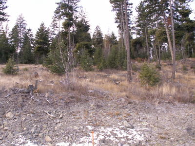 Flathead County Residential Lots & Land For Sale: 173 Ridge Line Drive