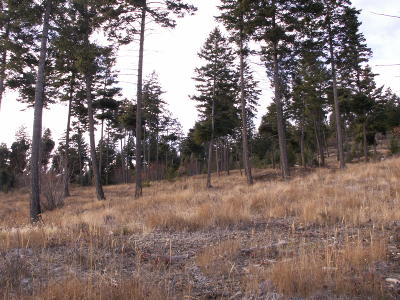 Flathead County Residential Lots & Land For Sale: 423 Ridge Line Drive