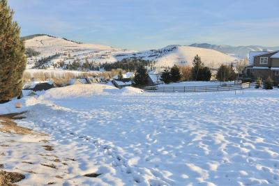 Residential Lots & Land For Sale: 2718 Pinnacle Place
