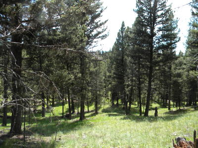 Seely Lake, Seeley Lake Residential Lots & Land For Sale: Lot 65 Spring Creek Drive