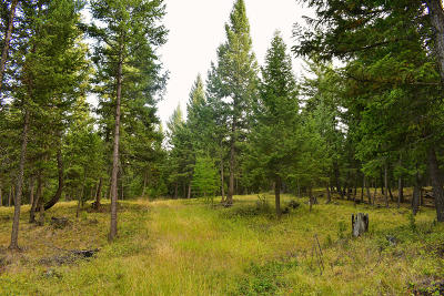 Lincoln County Residential Lots & Land For Sale: Nhn-5 Acre Gray Wolfe Trail
