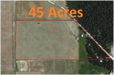 Flathead County Residential Lots & Land Under Contract Taking Back-Up : 800 Km Ranch Road