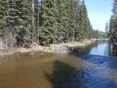Seeley Lake Residential Lots & Land For Sale: Nhn Beargrass Lane