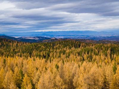 Flathead County Residential Lots & Land Under Contract Taking Back-Up : 1435 Patrick Creek Road