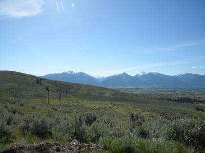 Stevensville Residential Lots & Land For Sale: Nka (Off) Picket Pin Trail