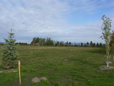 Kalispell Residential Lots & Land For Sale: Lot 7 Jefferson Street