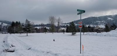 Missoula Residential Lots & Land For Sale: 1203 Creek Crossing Road