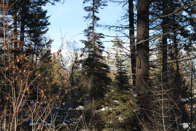 Whitefish Residential Lots & Land For Sale: 25 Harlequin Court