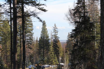 Whitefish Residential Lots & Land For Sale: 35 Harlequin Court