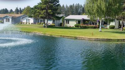 Flathead County Single Family Home For Sale: 119 Trevino Drive