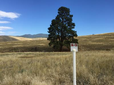 Missoula Residential Lots & Land For Sale: 2004 Diamond Lil Cluster