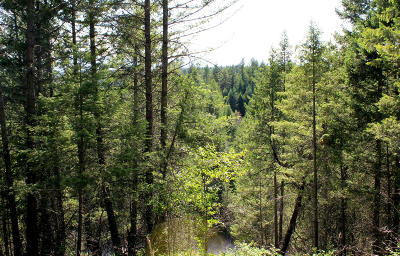 Flathead County Residential Lots & Land For Sale: 265 South Wakewood Drive