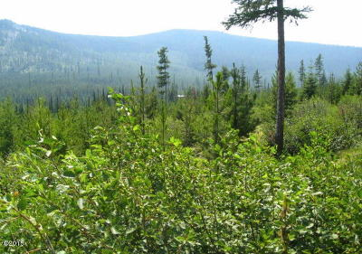 Flathead County Residential Lots & Land For Sale: Nhn Bold Peak Road