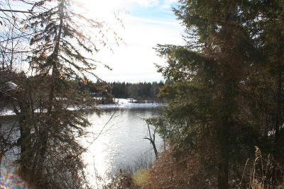 Flathead County Residential Lots & Land For Sale: 1450 Riparian Drive