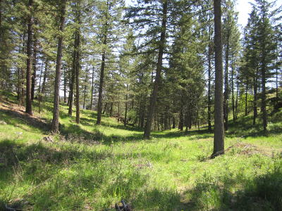 Flathead County Residential Lots & Land For Sale: Lot 4 Rock Ridge Way