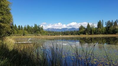 Flathead County Residential Lots & Land For Sale: 620 Leksand Trail