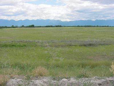 Flathead County Residential Lots & Land For Sale: 205 Industrial Court
