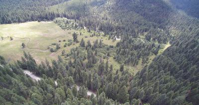 Alberton, Saint Regis, Huson, Heron, Noxon, Paradise, Superior, Thompson Falls, Trout Creek Residential Lots & Land For Sale: 3775 Tamarack Creek Road