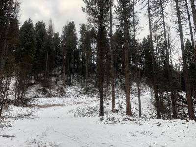 Seely Lake, Seeley Lake Residential Lots & Land For Sale: Nhn Pyramid Loop