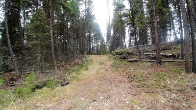 Seely Lake, Seeley Lake Residential Lots & Land For Sale: 701 Evergreen Drive