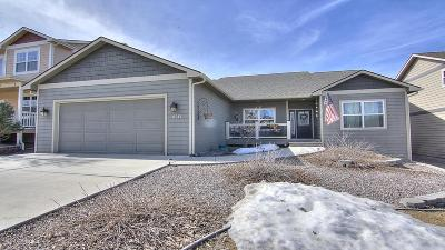 Missoula Single Family Home For Sale: 6015 Brusett Drive