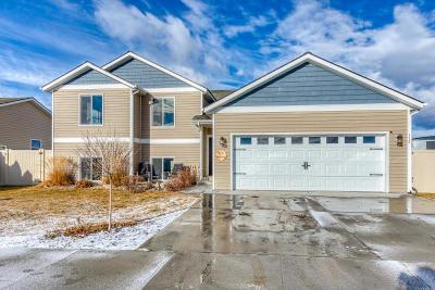 Hamilton Single Family Home For Sale: 113 Winners Way