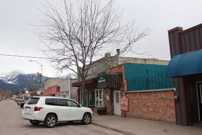 Lake County Commercial For Sale: 319 Main Street South West