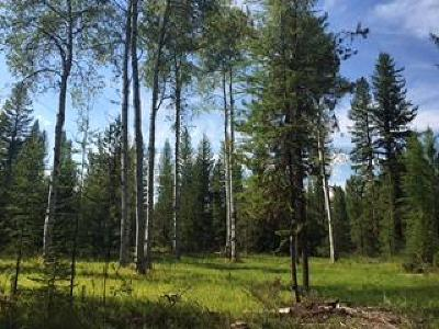 Seeley Lake Residential Lots & Land For Sale: Nhn Boy Scout Road