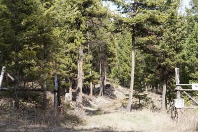 Flathead County Residential Lots & Land For Sale: 650 Dower Draw