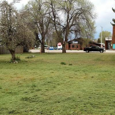 Ravalli County Residential Lots & Land For Sale: 234 Main Street