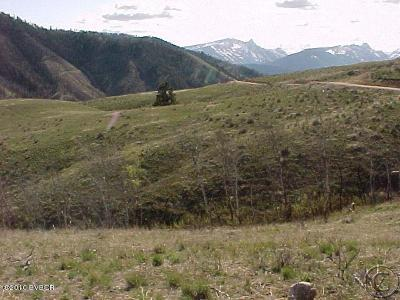 Ravalli County Residential Lots & Land For Sale: 6a Thor Road