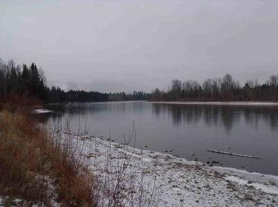 Flathead County Residential Lots & Land For Sale: 1243 Jellison Road