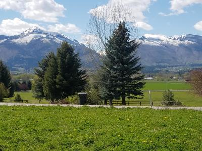 Corvallis Residential Lots & Land For Sale: 827 Mint View