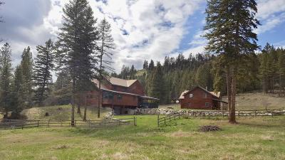 Flathead County Single Family Home For Sale: 100 Pewitt Lane