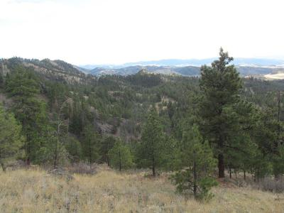 Cascade, Craig, Wolf Creek Residential Lots & Land For Sale: Mountain Home Lane