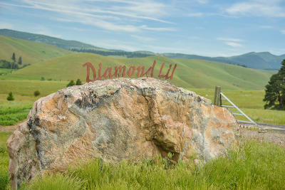 Residential Lots & Land For Sale: 2003 Diamond Lil Cluster