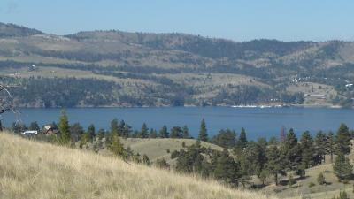 Residential Lots & Land For Sale: 4190 Sawmill Gulch Drive