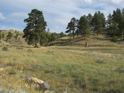 Residential Lots & Land For Sale: 4170 Magpie Gulch Road