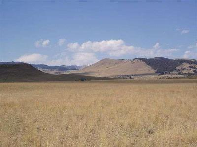 Residential Lots & Land For Sale: Lot 197 Virginia City Ranches