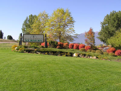Hamilton Single Family Home For Sale: 617 Eastside Hwy