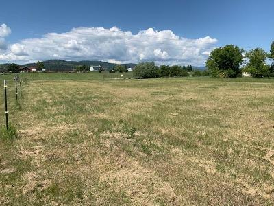 Kalispell Residential Lots & Land For Sale: 600 Hun Lane