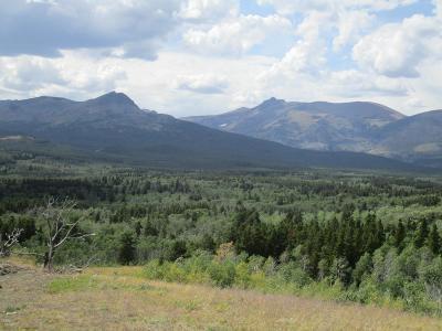 East Glacier Park Residential Lots & Land For Sale: Nhn Glacier Avenue