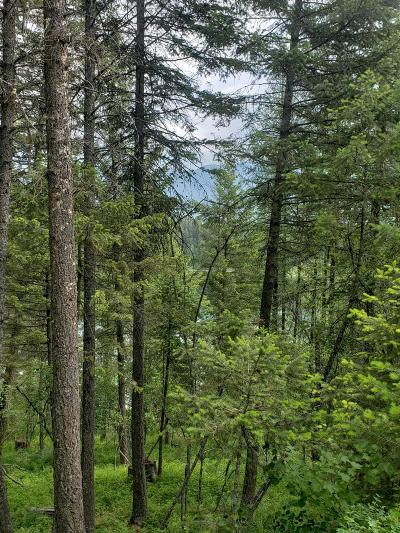 Flathead County Residential Lots & Land For Sale: 397 South Many Lakes Drive