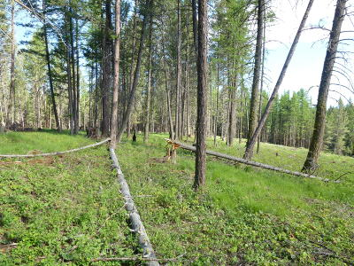 Kalispell Residential Lots & Land Under Contract Taking Back-Up : Nhn Rock Bottom Road