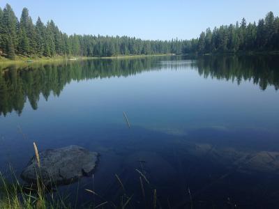 Condon, Potomac, Seeley Lake Residential Lots & Land For Sale: Cygnet Lake