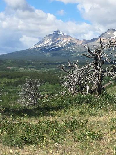 East Glacier Park Residential Lots & Land For Sale: 112 Rip Rap Lane