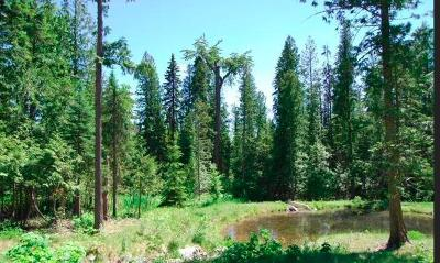 Whitefish Residential Lots & Land For Sale: 90 Woodlandstar Circle