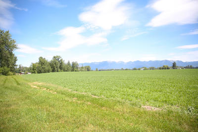Kalispell Residential Lots & Land For Sale: Nhn Steel Bridge Road