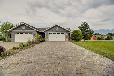 Lake County Single Family Home For Sale: 417 Timberwolf Drive