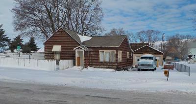 Missoula Single Family Home For Sale: 1038 Turner Street